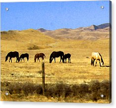 Acrylic Print featuring the digital art Pastured Horses by Timothy Bulone