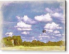 Acrylic Print featuring the digital art Pastureland by Barry Jones