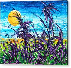 Patch Of Field Grass Acrylic Print by Rollin Kocsis