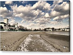 Patches Acrylic Print by Diana Angstadt