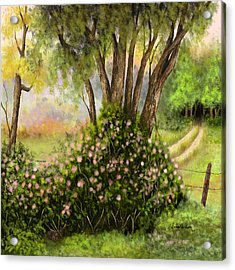Acrylic Print featuring the painting Patches Of Beauty by Sena Wilson