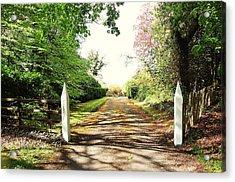 Path Ahead Acrylic Print