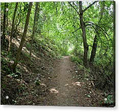 Acrylic Print featuring the photograph Path By The River by Ben Upham III
