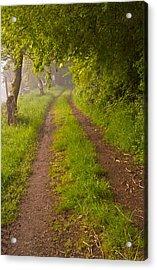 Path From Bullock Lake Acrylic Print