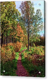 path in a beautiful country Park on a Sunny autumn day Acrylic Print