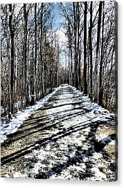 Path In Winter Acrylic Print