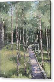 Path Into The Woods Acrylic Print
