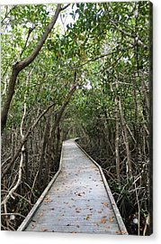 Path Less Traveled  Acrylic Print by Joanne Parks