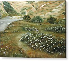 Path Of Flowers Acrylic Print by Angeles M Pomata