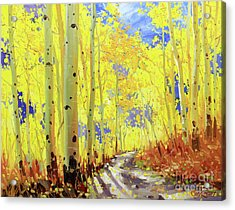 Path Of Owl Creek Acrylic Print