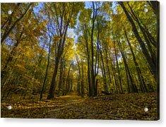 Acrylic Print featuring the photograph Path Through An Autumn Rainbow by Owen Weber
