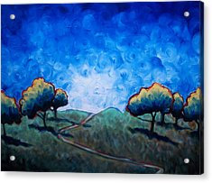 Path Through Las Trampas Acrylic Print by Sheila Tajima