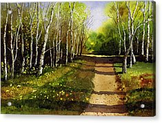 Path Through Silver Birches Acrylic Print by Paul Dene Marlor
