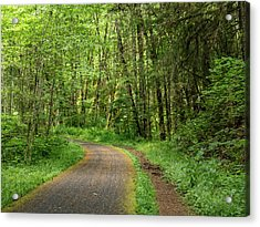 Acrylic Print featuring the photograph Path Through The Woods by Jean Noren