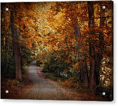 Path To Autumn  Acrylic Print by Jessica Jenney