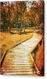 Path To Autumn Marshlands Acrylic Print