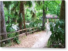 Path To Shade Acrylic Print