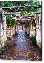 Path To The Alamo Acrylic Print by Anthony Jones