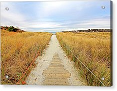 Path To The Beach Acrylic Print