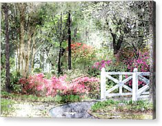 Path To The Bridge Acrylic Print by Donna Bentley