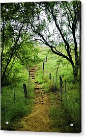 Acrylic Print featuring the photograph Pathway Of Life by Pamela Walton