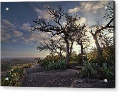 Pathway On Top Of Enchanted Rock Acrylic Print