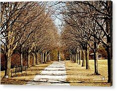 Pathway Through Trees Acrylic Print