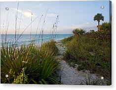 Pathway To Barefoot Beach  In Naples Acrylic Print