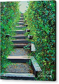 Pathway To Puget Sound Acrylic Print by Stephen Ponting