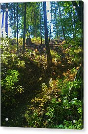 Pathway To Surrender Methow Valley Photography By Omashte Acrylic Print by Omaste Witkowski