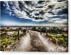 Pathway To The Beach Acrylic Print by Douglas Barnard