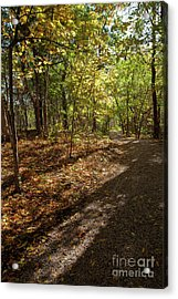 Acrylic Print featuring the photograph Pathways In Fall by Iris Greenwell