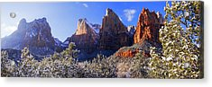 Acrylic Print featuring the photograph Patriarchs by Chad Dutson