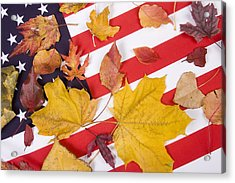 Patriotic Autumn Colors Acrylic Print by James BO  Insogna