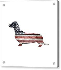 Patriotic Dachshund Acrylic Print by Lisa Crisafi