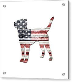 Patriotic Labrador Retriever Acrylic Print