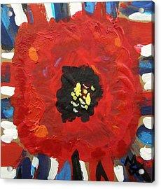 Patriotic Poppy Acrylic Print