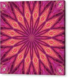 Pattern I Acrylic Print