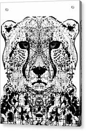Patterned Cheetah Acrylic Print by Harold Belarmino