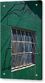 Patterns Acrylic Print by Murray Bloom