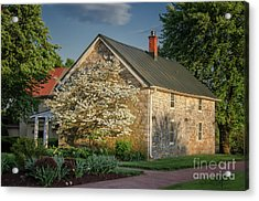 Acrylic Print featuring the photograph Patterns Of Shadow And Light by Lois Bryan