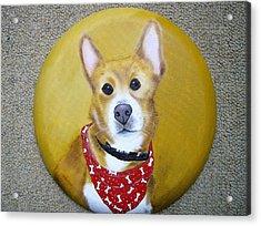 Patti's Grand-dog Acrylic Print