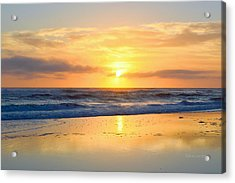 Acrylic Print featuring the photograph Pea Island In November by Barbara Ann Bell