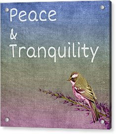 Peace And Tranquility  Acrylic Print