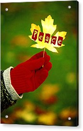 Peace Card Acrylic Print