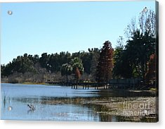 Acrylic Print featuring the photograph Peace by Carol  Bradley
