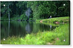 Acrylic Print featuring the photograph Peace by Lori Coleman