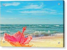 Acrylic Print featuring the photograph Peace Love And Aloha by Sharon Mau