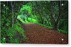 Peace Of Heaven On Earth, Carmel, California Acrylic Print