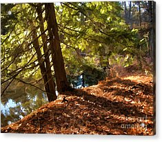 Acrylic Print featuring the photograph Peace On Earth by Betsy Zimmerli